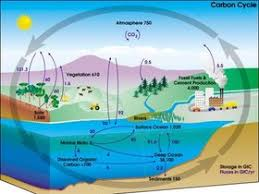 water cycle pictures images u0026 photos photobucket