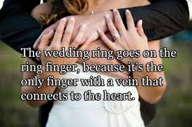 wedding quotes ring meaning of the wedding ring quotes