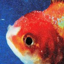 big photo album vince staples big fish theory album review hiphopdx