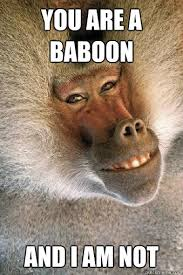 Baboon Meme - you are a baboon and i am not blaze baboon quickmeme