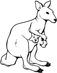 australian kangaroo coloring pages coloringstar