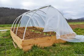greenhouse4 jpg