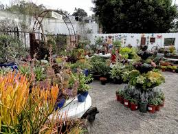 landscaping supply near me landscaping stores near me outdoor goods