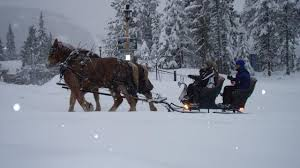sleigh rides in portland oregon mt adventure sleigh rides