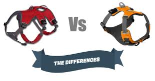 differences between front range and webmaster harness u2014 active hound
