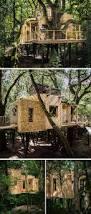 Baumhaushotel Bad Zwischenahn Baumraum Pfadfinder Baumhaus Urlaubs Da Möche Ich Mal Hin