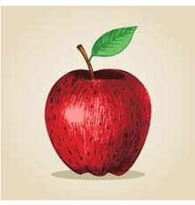 ripe red apple on a plaid background royalty free vector