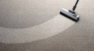 gainesville carpet cleaning services call steamworks