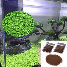 Asian Themed Fish Tank Decorations Aquarium Decorations Ebay