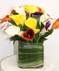Calla Lily Flower Delivery - calla lily vase in boston ma central square florist