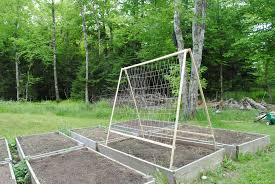 a frame trellis nova scotia garden