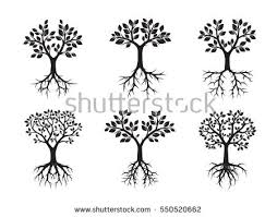 free tree with roots vector collection free vector