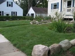 lawn alternatives creating sustainable landscapes