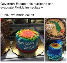 publix u0027s hurricane cakes are the best way to ride out irma