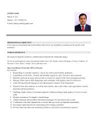 Nursing Resume Examples With Clinical Experience by Resume Sample For Job Application Filipino Contegri Com