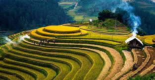 Top 5 Beautiful Places In The World by 5 Vietnam Destinations In The Most Beautiful And Worth Living