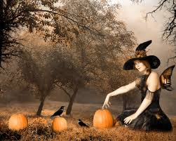 halloween witch with pumpkins wallpaper background 26665
