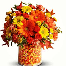 analogous floral design pinterest candy corn flower