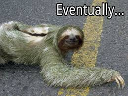 Sloth Meme Pictures - sloth eventually know your meme