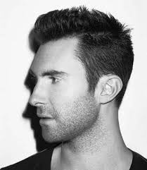 Short Hairstyles For Men With Thick Hair Best 25 Mens Short Hairstyles 2014 Ideas On Pinterest Male