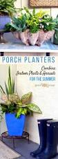 summering houseplants in beautiful arrangements garden therapy
