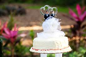 cake topper ideas cake topper ideas for lgbt couples