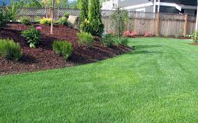 northland yard service landscaping east grand forks mn