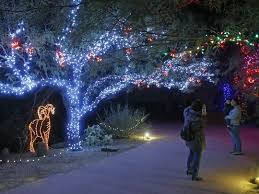 phoenix zoo lights military discount 25 cool november events for kids