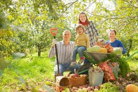 Family Garden - happy family with harvest in garden photo free download