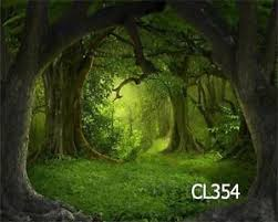 forest backdrop 10x8ft fairy tale jungle forest thin vinyl photography backdrop