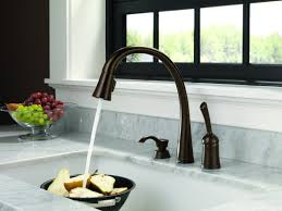 faucets kitchen scenic delta gold kitchen faucets