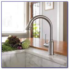 Hansgrohe Faucet Costco Hansgrohe Kitchen Faucet Costco Kitchen Set Home Design Ideas