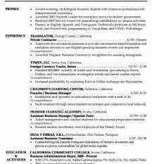 Resume Summary Ideas Awesome Design Ideas Resume Summary Examples Entry Level 6 Entry