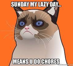 Lazy Day Meme - sunday my lazy day means u do chores cartoon grumpy cat make