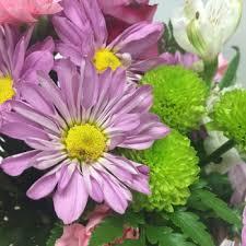 houston flowers sicola s florist 26 photos 11 reviews florists 9516 jones rd