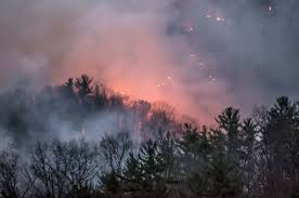 Wildfire Areas by Usfs Wildfires Being Investigated As Human Caused News