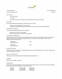 Resume For Child Care Job Resume Examples For Child Care