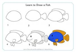 learn to draw an octopus
