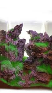 nano aquascape the mind bending nano aquascape of john pini