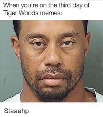 Tiger Woods Meme - 25 best memes about tiger woods memes tiger woods memes