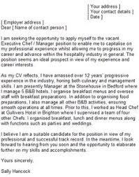personal chef cover letter sample mediafoxstudio com