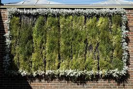 file capel manor college gardens vertical wall garden jpg