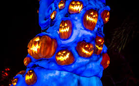 Pretty Lights Halloween by Disney Photoblography A Halloween Christmas Tree In The Graveyard
