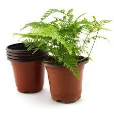 nursery plant pots thenurseries