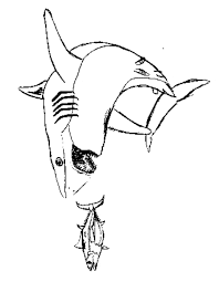 sharks coloring pages basking shark coloring free animal coloring pages sheets basking