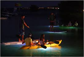 Kayak Night Lights Kayak Or Sup Board At Night With The Nocqua Led Light System
