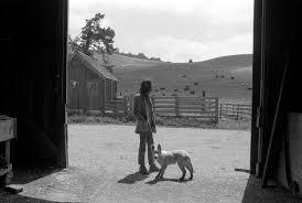 Why Are Flags At Half Mast Today In California Neil Young Broken Arrow Ranch Half Moon Bay California 1971