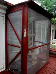 Screen Kits For Porch by Build A Catio A Tiny Screen House For Kitty Cats Http