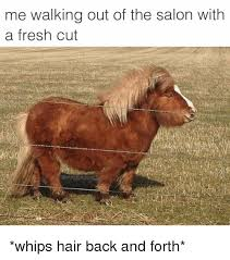 Salon Meme - me walking out of the salon with a fresh cut whips hair back and