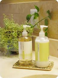Easy Kitchen  Bathroom Upgrade The Borrowed AbodeThe Borrowed Abode - Bathroom hand soap dispenser